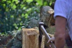 Split piece of wood. Stock Photo