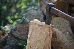 Split piece of wood. Stock Images