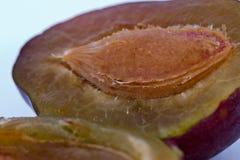 Split plum Royalty Free Stock Photos