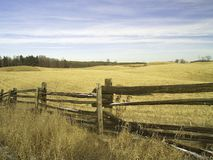 Split Rail Fence Royalty Free Stock Photo