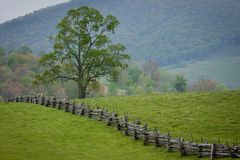 Split rail fence crosses a green mountain pasture. Stock Photo