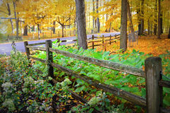 Split Rail Fence, Fall Colors Stock Images