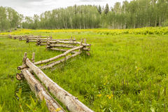 Split Rail Fence Crosses A Green Mountain Pasture Stock