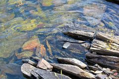 Split rocks along a waters edge of the Canadian Shield Stock Image