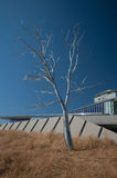 Split by Roxy Paine, Olympic Sculpture Park, Seattle Royalty Free Stock Photography