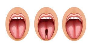 Split tongue and fangs graft. Illustration of a split tongue and fangs graft Stock Photos