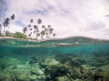 Free Split View Cross Section Of Sea Water And Palm Trees In Samoa, S Stock Images - 106792074