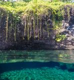 Split view of Piula Cave Pool swimming hole with clear water and. Lush tropical foliage - at Upolu Island, Western Samoa, South Pacific royalty free stock photos