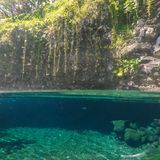 Split view of Piula Cave Pool swimming hole with a fish swimming. In clear water - at Upolu Island, Western Samoa, South Pacific royalty free stock photo