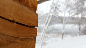 Split wood grain. Focused wood grain with fresh snow in the background Royalty Free Stock Photography