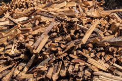 Split wood pile in forest Royalty Free Stock Photo