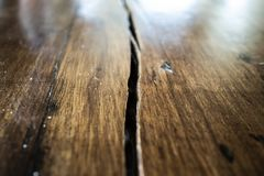 Split on a wooden surface close up. Slashed wood surface close up stock images