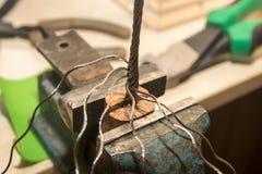 Splits för öga för riggningtrådrep Royaltyfri Foto