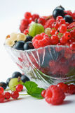 Splitted berries in a bowl. Mixed summer splitted berries in a cristal bowl on white Stock Images