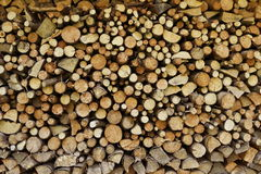 Splitted firewood texture Stock Image