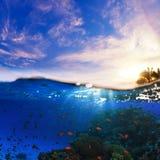 Splitted podwodnego zmierzchu mokry szablon Fotografia Royalty Free