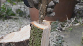 Splitting logs Stock Photography