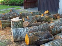 Splitting logs Stock Images