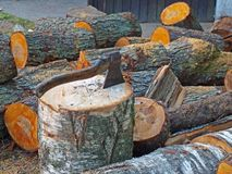 Splitting logs 2 Royalty Free Stock Image