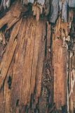 Splittrad wood textur och bakgrund Closeupsikten av splittrar wood textur Abstrakt textur och bakgrund för formgivare Royaltyfria Foton