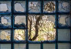 Splittrat fönster för glass tegelsten royaltyfria bilder