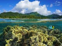 Splittring över under Huahine koraller franska Polynesien arkivbilder