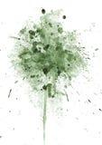 Splodge verde Imagen de archivo libre de regalías