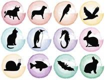 Splotches colorati con le siluette animali Fotografie Stock Libere da Diritti