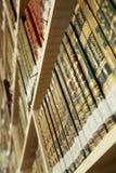 społeczeństwo biblioteczna Zdjęcie Stock