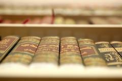 społeczeństwo biblioteczna Obraz Royalty Free