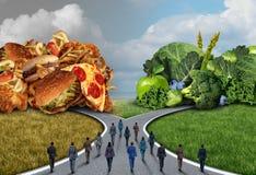 Społeczeństwo Karmowej diety wybór royalty ilustracja