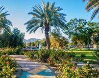 Społeczność parka palm springs zdjęcia stock