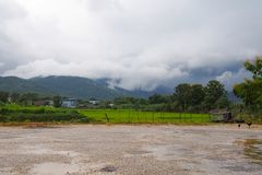 Społeczności z naturalną scenerią z zielonymi polami, kurczaki podnoszący w naturze Z pięknym halnym tłem z chmurami obraz stock