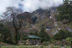 Spoczynkowy dom dla pobytu przy Shingba Rododendronowym sanktuarium blisko Yumthang doliny, Sikkim, India zdjęcie stock