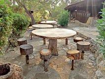 Spoczynkowy teren - parkowi Drewniani stoły i krzesła Fotografia Stock