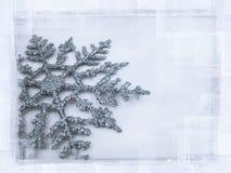 spodlony płatek śniegu Obrazy Stock