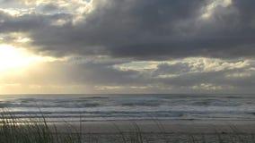 Spoedig na dageraad bij het strand van Elston ` s, het Paradijs ` van de aka` Surfer ` s stock footage