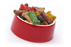 Spoiled. A full dinner of dog treats for a very pampered pooch Royalty Free Stock Image