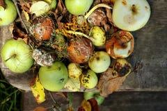 Spoiled Apples Stock Photo