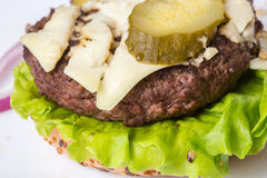 Spoiled tasteless burger with roasted not Cutlets,. Old spoiled tasteless burger with roasted not Cutlets Stock Photography