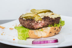 Spoiled tasteless burger with roasted not Cutlets,. Old spoiled tasteless burger with roasted not Cutlets Stock Image