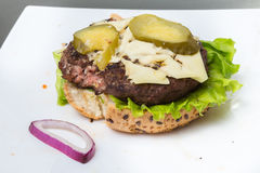 Spoiled tasteless burger with roasted not Cutlets,. Old spoiled tasteless burger with roasted not Cutlets Stock Photos