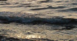 Spokój fale morze w wieczór zdjęcie wideo