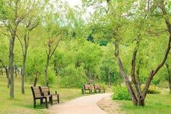 spokój i pokojowy park zdjęcia stock