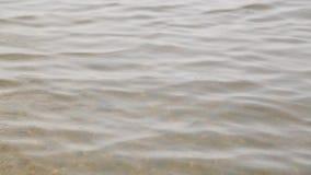 Spokój, jasny jezioro, minimalistic krajobraz zdjęcie wideo