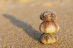 Spokój na plaży Obraz Stock