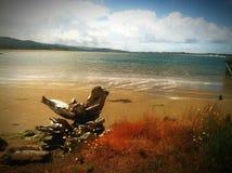 Spokój plaża Fotografia Royalty Free