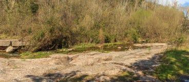 Spokój rzeka między roślinnością Obraz Stock