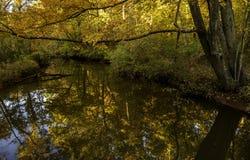 Spokój w jesień krajobrazie obraz royalty free