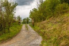 Spokój wiejska droga po środku poly podczas sp zdjęcie stock